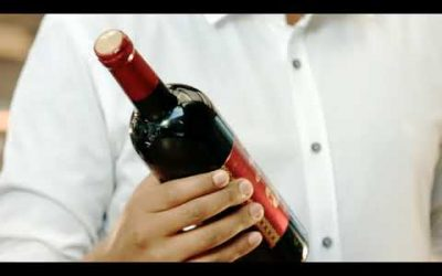 Gouder Wine TV Commercial for the New Year (2010)